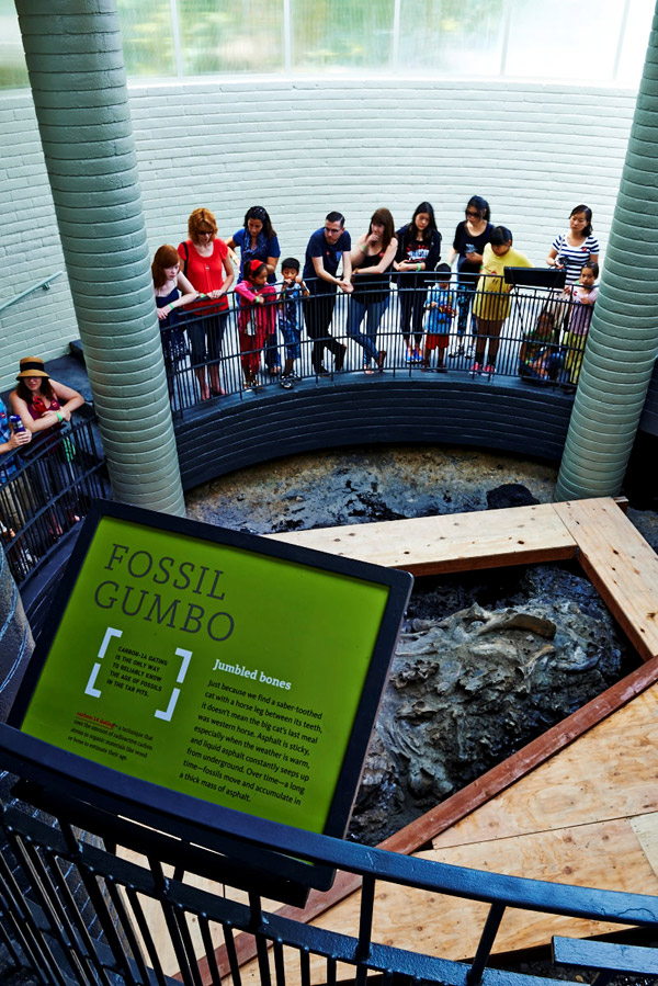 拉布雷亚焦油坑和博物馆