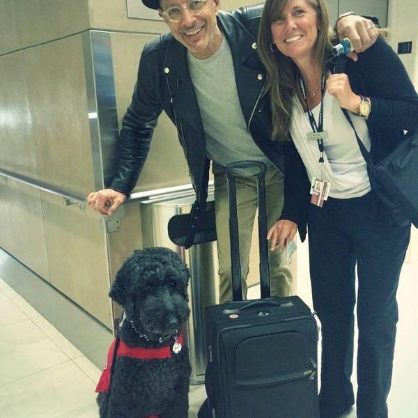宠物减压 (Pets Unstressing Passengers,PUP)