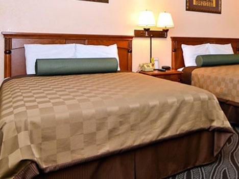 撒哈拉汽车旅馆
