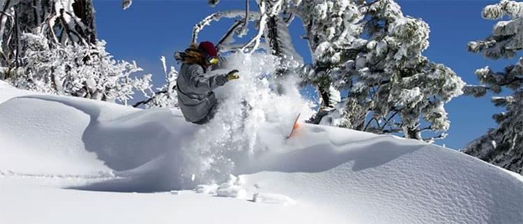 洛杉矶滑雪冲浪两不误高山滑雪场