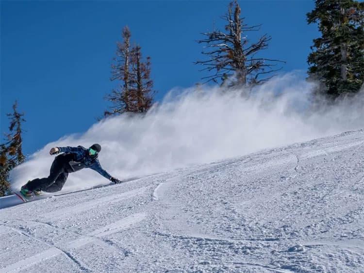 洛杉矶滑雪冲浪两不误